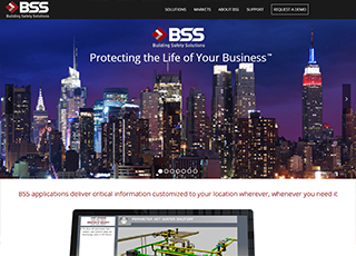 BSSNet.com Home Page screenshot